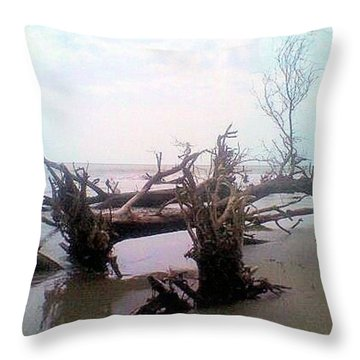 Bull Island Throw Pillow by James Potts