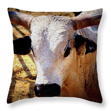 Bull Riders - Nightmare - Rodeo Bull Throw Pillow by Travis Truelove