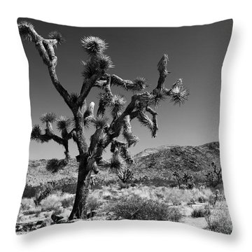 Bullet The Blue Sky - Joshua Tree N.p Throw Pillow by Henk Meijer Photography