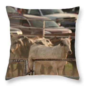 Bulls Throw Pillow by Denise Romano
