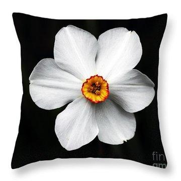 Bullseye Throw Pillow by John Rizzuto
