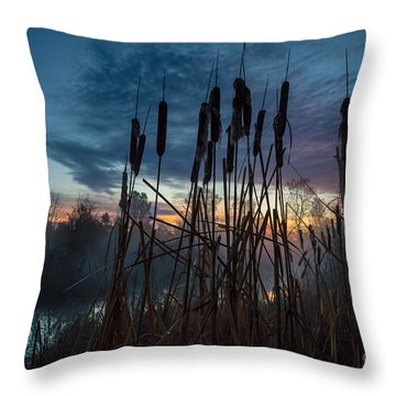 Bulrush Sunrise Throw Pillow