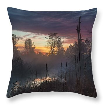 Bulrush Sunrise Full Scene Throw Pillow