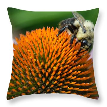 Throw Pillow featuring the photograph Bumble Bee by Jim Poulos