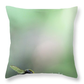 Throw Pillow featuring the photograph Bumble Bee by Jivko Nakev