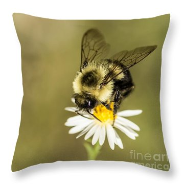Bumble Bee Macro Throw Pillow by Debbie Green