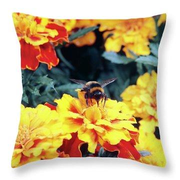 Bee On Flower Throw Pillows
