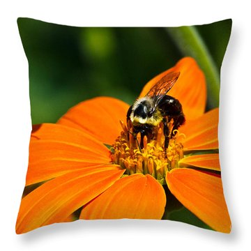 Bumblebee Hard At Work Throw Pillow