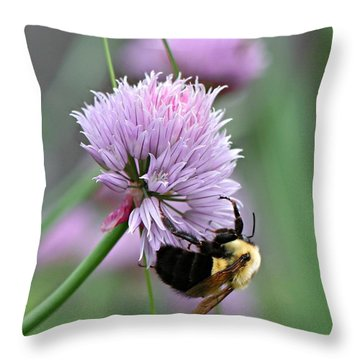Throw Pillow featuring the photograph Bumblebee On Clover by Barbara McMahon
