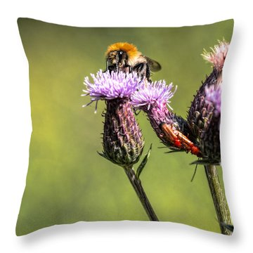 Throw Pillow featuring the photograph Bumblebee On Thistl by Leif Sohlman