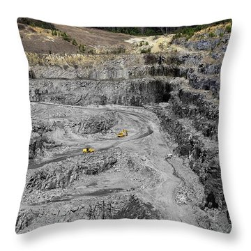 Bumbling Down-under Throw Pillow by Kelvin Booker