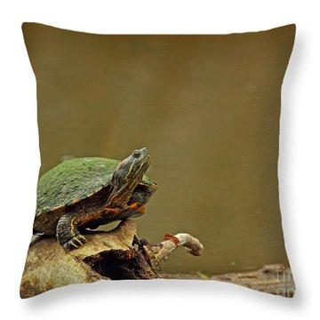 Bump On A Log Throw Pillow