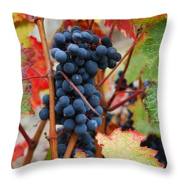 Bunch Of Grapes Throw Pillow by Jani Freimann