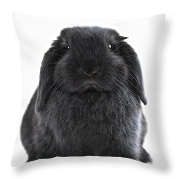 Suzie Throw Pillow