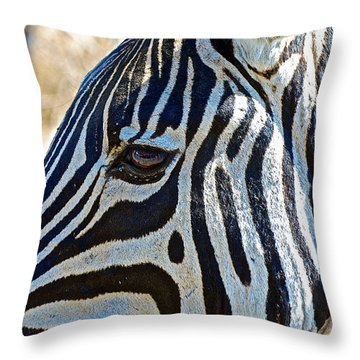 Burchell's Zebra's Face In Kruger National Park-south Africa Throw Pillow