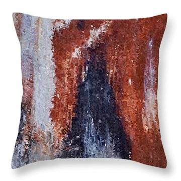 Throw Pillow featuring the digital art Burgundy And Black by Heidi Smith