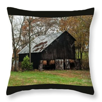 Throw Pillow featuring the photograph Burley Tobacco  Barn by Debbie Green