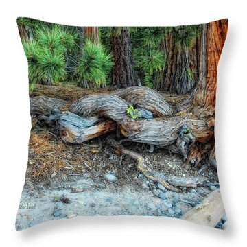 Burly Throw Pillow by Donna Blackhall