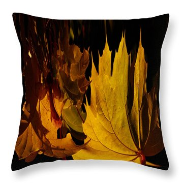 Burning Fall Throw Pillow by Jouko Lehto