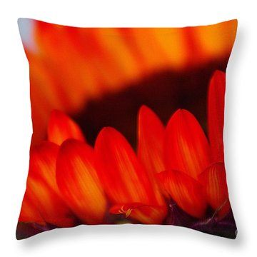 Throw Pillow featuring the photograph Burning Ring Of Fire 2 by John S