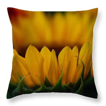 Throw Pillow featuring the photograph Burning Ring Of Fire by John S