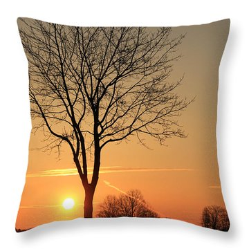 Burning Tree In The Sunrise Throw Pillow