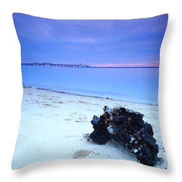 Burnt Driftwood Sunset Throw Pillow by Jennifer Casey