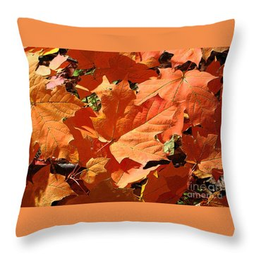 Burnt Orange Throw Pillow by Ann Horn