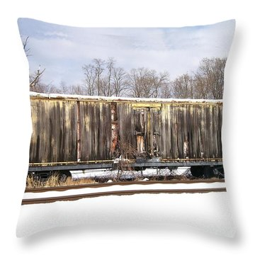 Burnt Throw Pillow by Sara  Raber