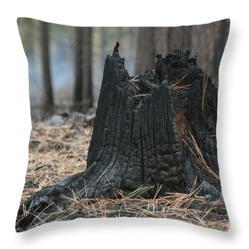 Burnt Tree Trunk Throw Pillow by Juli Scalzi