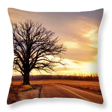 Burr Oak Silhouette Throw Pillow by Cricket Hackmann