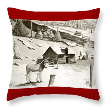 Burro In The Rockies Throw Pillow