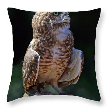 Throw Pillow featuring the photograph Burrowing Owl by Debby Pueschel