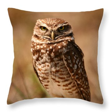 Burrowing Owl Impressions Throw Pillow