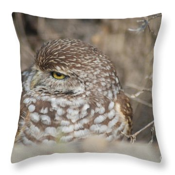 Throw Pillow featuring the photograph Burrowing Owl by Oksana Semenchenko