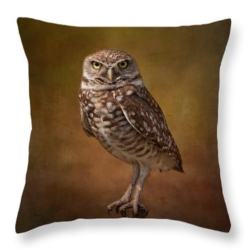 Burrowing Owl Portrait Throw Pillow by Kim Hojnacki