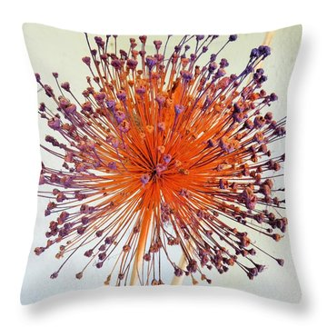 Burst Of Beauty Throw Pillow by Jeanette Oberholtzer