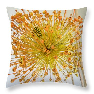 Burst Of Yellow Throw Pillow by Jeanette Oberholtzer