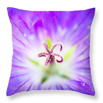 Burst Throw Pillow by Shane Holsclaw