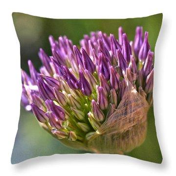 Bursting Allium Purple Sensation Throw Pillow by Rona Black