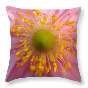 Windflower Throw Pillow by Cheryl Hoyle