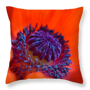 Bursting With Colour Throw Pillow