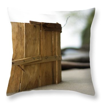 Throw Pillow featuring the photograph Bushel Basket by Rebecca Sherman
