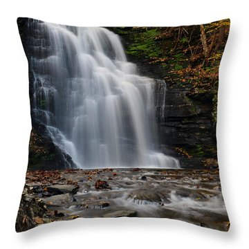 Bushkill Falls Throw Pillow by Yue Wang