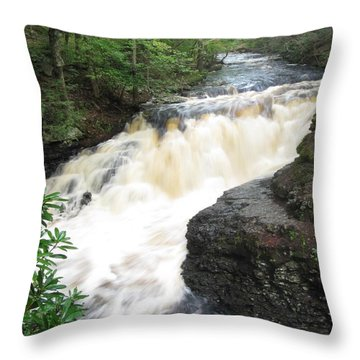 Bushkill Rapids Throw Pillow by Richard Reeve