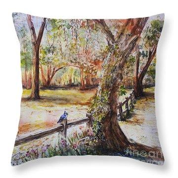 Bushnell Morning Throw Pillow
