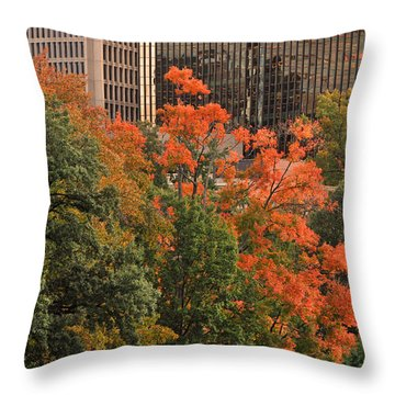 Bushnell Park Throw Pillow