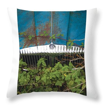 Bushy Park Beautifully Distressed Poster Throw Pillow