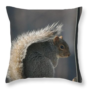 Throw Pillow featuring the photograph Bushy Tail by Mark McReynolds