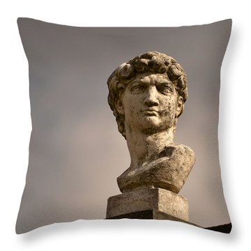 Throw Pillow featuring the photograph Bust Of Apollo by Nadalyn Larsen